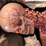 Sniper Elite 4 — Появился рентген